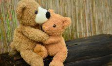 teddy-1113160_1280